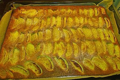Apfelkuchen schnell und fein 152