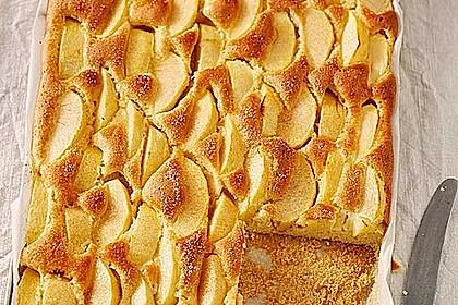 Apfelkuchen schnell und fein 10