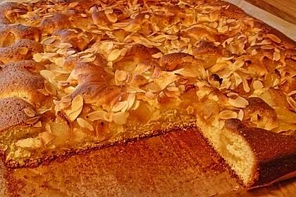 Apfelkuchen schnell und fein 21
