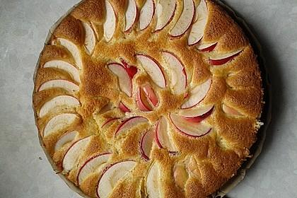 Apfelkuchen schnell und fein 12