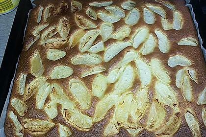 Apfelkuchen schnell und fein 164