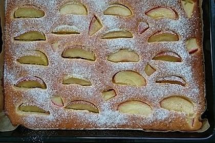Apfelkuchen schnell und fein 146
