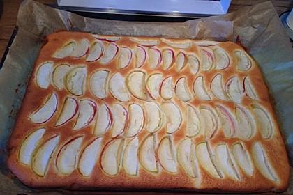 Apfelkuchen schnell und fein 94