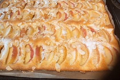 Apfelkuchen schnell und fein 145