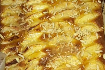 Apfelkuchen schnell und fein 93