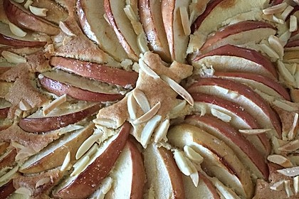 Apfelkuchen schnell und fein 67