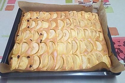 Apfelkuchen schnell und fein 6