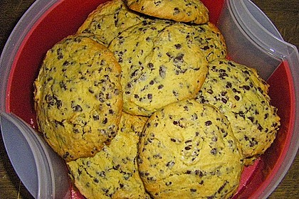 Chewy Chocolate Chip Cookies 48