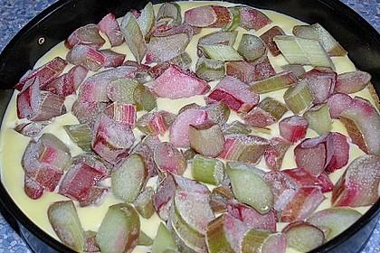 Rhabarber Blechkuchen 17