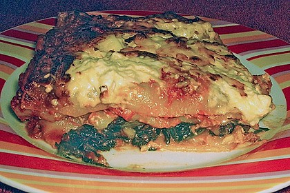 Idiotensichere Lasagne 111