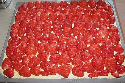 Erdbeer-Kuchen mit Vanillecreme 77