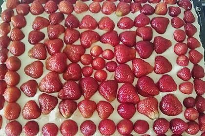 Erdbeer-Kuchen mit Vanillecreme 82