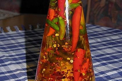Chili - Öl 1