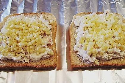 Flammkuchen - Toast 45