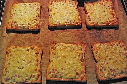 Flammkuchen - Toast 34