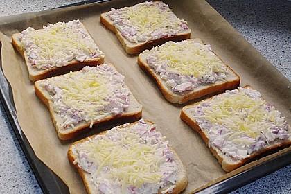 Flammkuchen - Toast 31