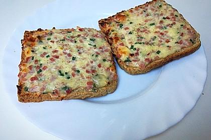 Flammkuchen - Toast 16