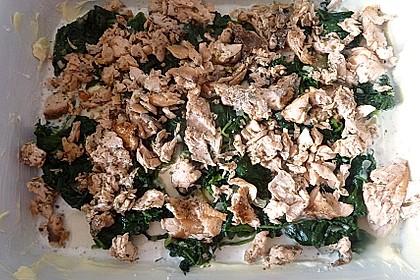 Lachs - Spinat - Lasagne 5