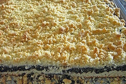 Mohnkuchen vom Blech 1