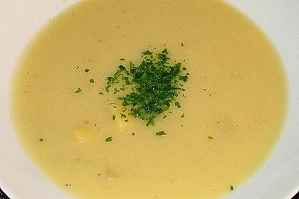Zucchini - Creme - Suppe 13