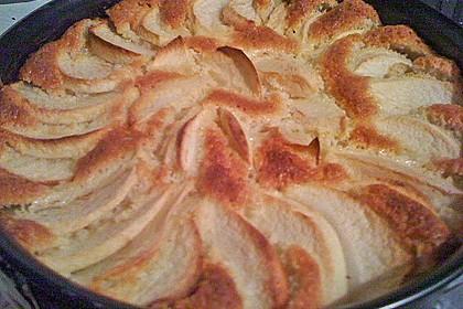 Apfelkuchen, sehr fein 13