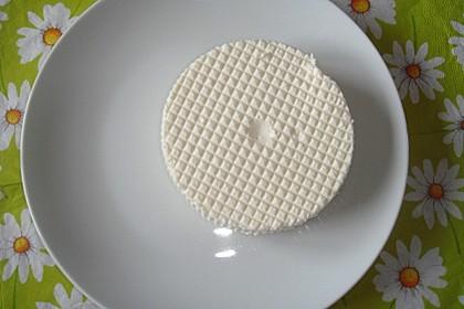 Selbst gemachter Frischkäse, Chennah oder Chana auf indisch 9