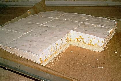 Joghurt - Schnitten 11