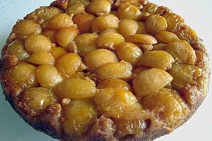 Aprikosen - Joghurt - Tarte 2