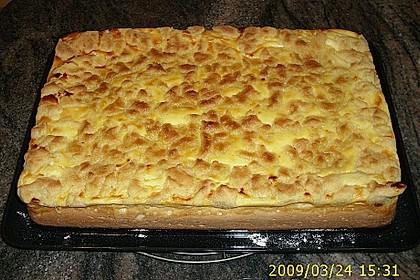 Schlesischer Streuselkuchen 16