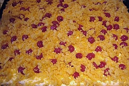 Schlesischer Streuselkuchen 18