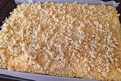 Schlesischer Streuselkuchen 24