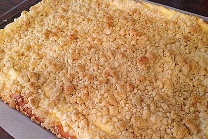 Schlesischer Streuselkuchen 14