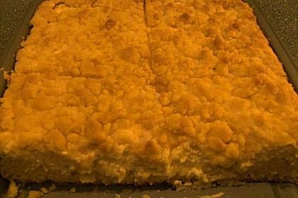 Schlesischer Streuselkuchen 21