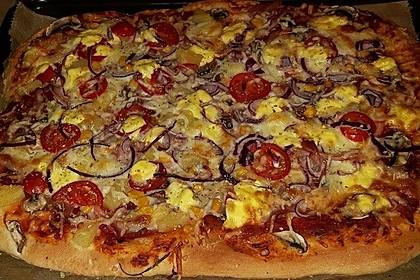 Pizza Hut Pizzateig 67