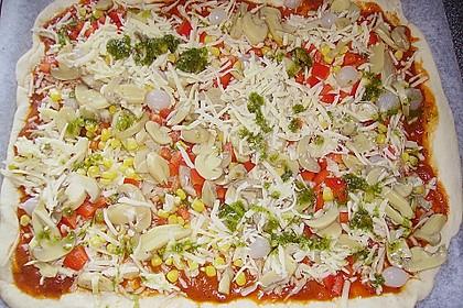Pizza Hut Pizzateig 96