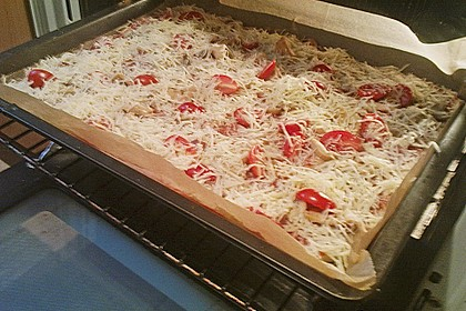 Pizza Hut Pizzateig 162