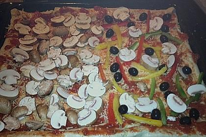 Pizza Hut Pizzateig 171