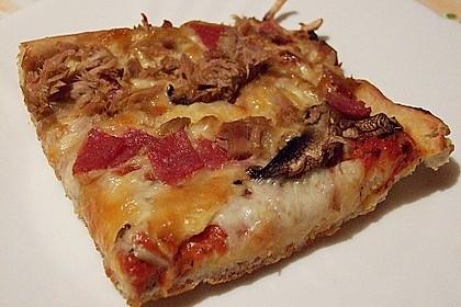Pizza Hut Pizzateig 38