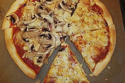 Pizza Hut Pizzateig 46