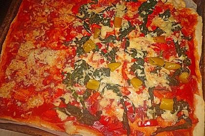 Pizza Hut Pizzateig 165