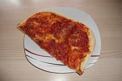 Pizza Hut Pizzateig 202