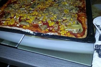 Pizza Hut Pizzateig 44