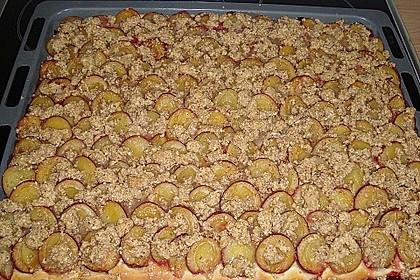 Hefe - Zwetschgenkuchen 23