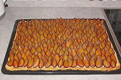 Hefe - Zwetschgenkuchen 3