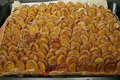 Hefe - Zwetschgenkuchen 21