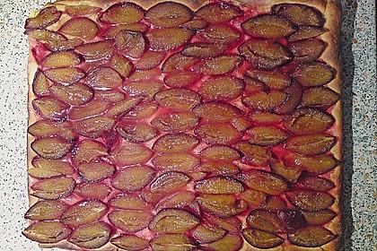 Hefe - Zwetschgenkuchen 16