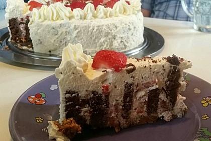 Gewickelte Erdbeer - Tiramisu - Torte 9