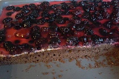 Beerenkuchen mit Mascarpone 23
