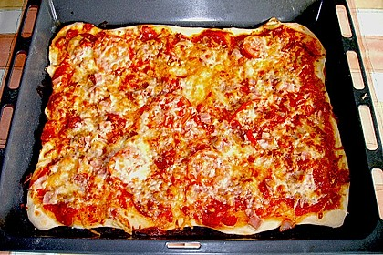 Pizzateig für Brotbackautomaten 5
