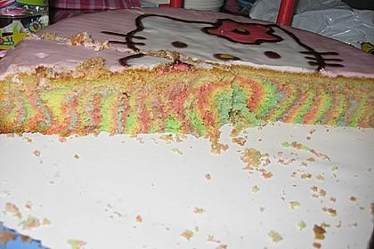 Regenbogenkuchen 141